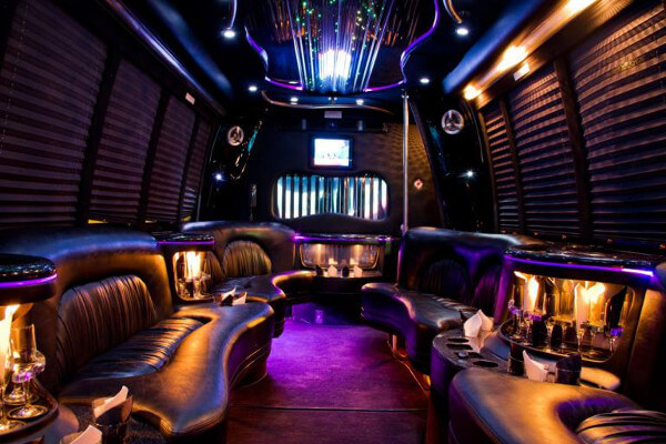 15 Person Party Bus Rental Houston